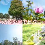 尾久の原公園は子連れでのピクニックに最適な公園 #地域ブログ #荒川区のはなし #荒川区 #育児
