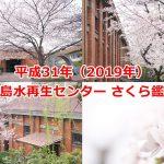 平成31年(2019年)の三河島水再生センター さくら鑑賞会で桜と歴史的建造物のコラボをたっぷり撮影してきた #地域ブログ #荒川区のはなし #荒川区