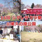 2019年4月6日(土)に尾久の原公園で開催された第16回 シダレザクラ祭りを写真と動画でレポートします #地域ブログ #荒川区のはなし #荒川区 #桜 #尾久の原公園 #シダレザクラ