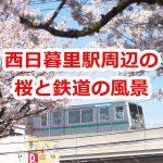 西日暮里駅周辺の桜と鉄道の風景 #地域ブログ #荒川区のはなし #荒川区