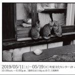 2019年5月11日(土)から19日(日)まで町屋文化センターにて小泉定弘写真展「平平凡凡」が開催 #地域ブログ #荒川区のはなし #荒川区