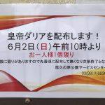 2019年6月2日(日)に尾久の原公園サービスセンターにて皇帝ダリアが無料配布されます #地域ブログ #荒川区のはなし #荒川区