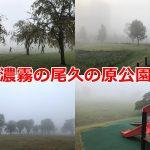 2019年10月30日(水)、濃霧の尾久の原公園 #地域ブログ #荒川区のはなし #荒川区