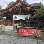荒川区南千住にある素盞雄神社(すさのおじんじゃ)では七五三詣のフォトスポットが用意されています #地域ブログ #荒川区のはなし #荒川区