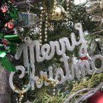 尾久の原公園にて本物のもみの木を使ったクリスマスツリーが展示中 #地域ブログ #荒川区のはなし #荒川区