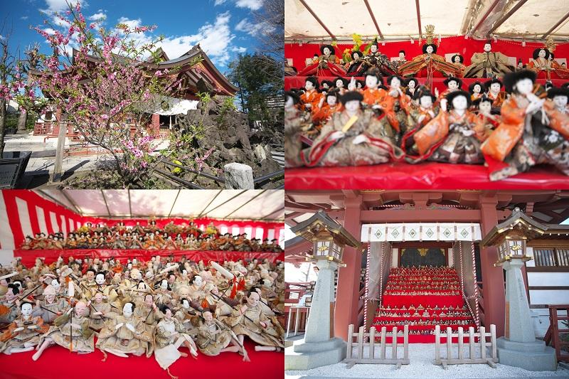 素盞雄神社(すさのおじんじゃ)の桃まつりは圧巻の雛飾りと美しい桃の花で春の到来を感じさせてくれます(令和2年(2020年)4月上旬まで) #地域ブログ #荒川区のはなし #荒川区