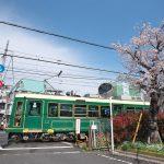 町屋駅近くの泊船軒横の踏切で都電と桜を撮影してみよう