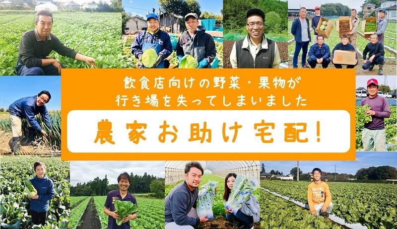 野菜10品+果物3品で2800円!まつのオンラインショップのまつのベジタブルガーデンで販売されている「農家お助け!宅配」がお得です