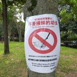 東京都荒川区にある尾久の原公園では「食用を目的としたセミの幼虫等の捕獲はやめてください」の掲示が出ています