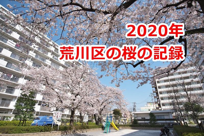 2020年の荒川区内の桜はこんなにも美しかったことを記録にも記憶にも残しておこう
