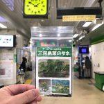 江戸・東京の伝統野菜 三河島菜のタネが常磐線の三河島駅で配布中