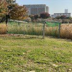 町屋の迷い犬が無事保護されたことで尾久の原公園のトラップも撤去されました
