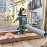 荒川区内の路地裏にある絶滅危惧種 荒川一丁目の井戸ポンプのお正月