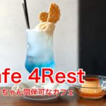 町屋駅近くにあるワンちゃん同伴可なカフェ「cafe 4Rest」を動画で紹介