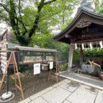 南千住にある素盞雄神社の境内でヤブキリとキリギリスが展示中