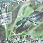 トンボやチョウを探そう!7月18日(日)に尾久の原公園で自然観察会「夏のトンボたち」が開催