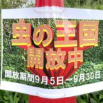 秋の虫がいっぱいいる!尾久の原公園の「虫の王国」が2021年9月30日(木)まで開放中