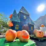 巨大カボチャがジャック・オー・ランタンに変身して、尾久の原公園のハロウィン展示がいよいよ完全体へ!